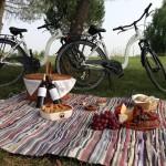 Picknick & bikes