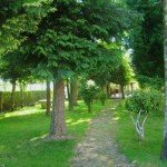 15 Jardim