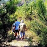 37 SÍTIO DAS ROLAS - Walking in the private pine forest
