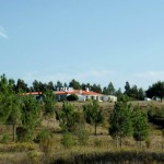 39 SÍTIO DAS ROLAS - View from the pine forest towards accommodations and pool area