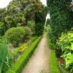 5 Jardim das Casinhas - Cópia