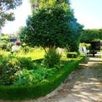 6 Jardim das Casinhas (2) - Cópia
