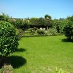 8 Jardim (2)