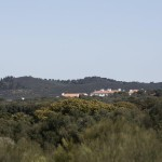ESTATE_HERDADE_BARROCAL_010416_3687