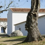 ESTATE_HERDADE_BARROCAL_010416_3935