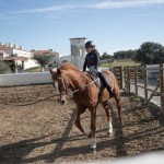 HORSES1(©Ricardo Bravo)