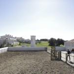 HORSES_HERDADE_BARROCAL_010416_4157