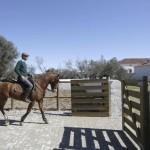 HORSES_HERDADE_BARROCAL_010416_4179