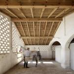 HORSES_HERDADE_BARROCAL_SOUTO_DE_MOURA_MONSARAZ_PT_P_031016_0106