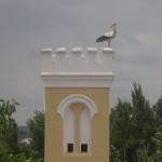 Quinta de Coalhos - Cegonhas 005
