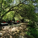 S 28b SELÃO - Romantic hideaways on the forest trail between river and lotus pond