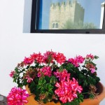 flor+torre