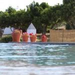 piscina+flores