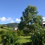 Casa da Fonte, the garden