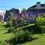 Casa da Talha, the garden (5)