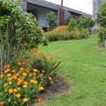 Casas do Pátio, the garden (16)