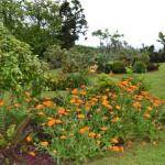 Casas do Pátio, the garden (8)