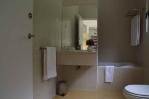 T1 Japanese Cedar Villa bathroom