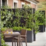 Quinta_Superior_terrace_[6493-A4]