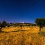 dalicenca-home-nightstars