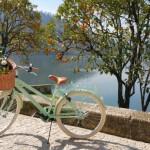 7 foto bicicleta