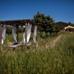 Naturarte Campo_Foto02