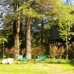 Eco Lounge 2
